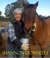 Shannon Donnelly