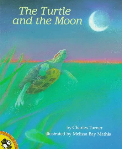 The Turtle and the Moon