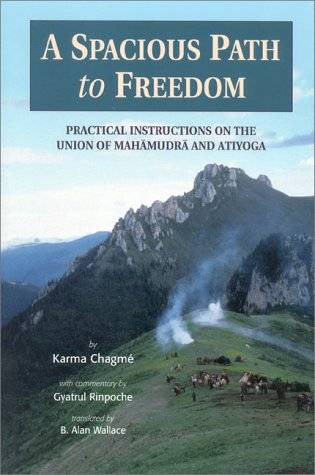 A Spacious Path to Freedom: Practical Instructions on the Union of Mahamudra and Atiyoga