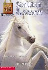 Stallion in the Storm (Animal Ark Hauntings, #1)