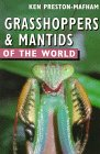 Grasshoppers And Mantids Of The World