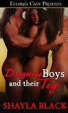 Dangerous Boys and Their Toy