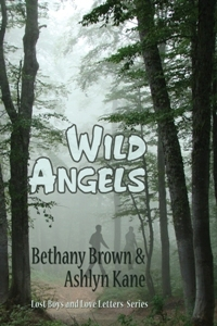 Wild Angels (Lost Boys and Love Letters, #3)