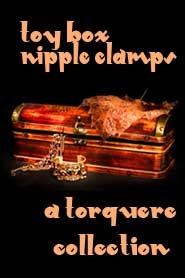 Toy Box: Nipple Clamps