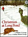 Christmas at Long Pond by William T. George