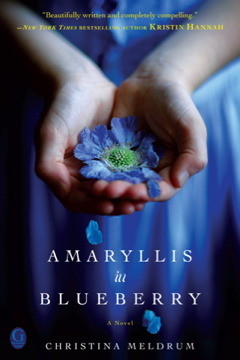Amaryllis in Blueberry by Christina Meldrum