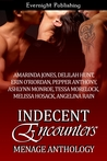 Indecent Encounters