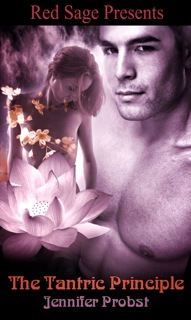 The Tantric Principle by Jennifer Probst