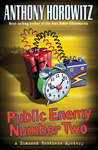 Public Enemy Number Two (Diamond Brothers, #2)