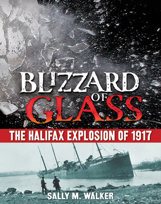 Blizzard of Glass by Sally M. Walker