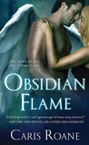 Obsidian Flame (Guardians of Ascension, #5)