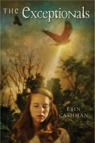 The Exceptionals by Erin Cashman
