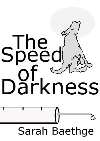 The Speed of Darkness by Sarah Baethge
