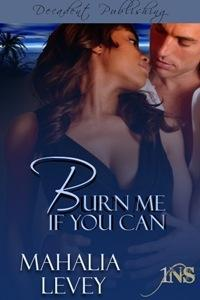 Burn Me if You Can by Mahalia Levey
