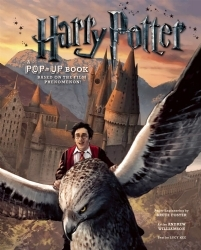 Harry Potter by Andrew Williamson