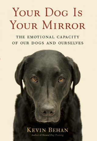 Your Dog Is Your Mirror by Kevin Behan