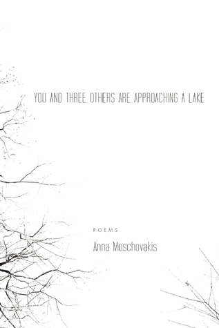 You and Three Others Are Approaching a Lake by Anna Moschovakis