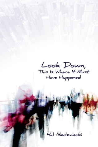 Look Down, This is Where it Must Have Happened by Hal Niedzviecki