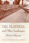 The Flatness and Other Landscapes