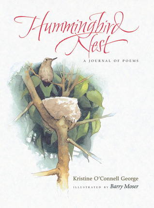 Hummingbird Nest by Kristine O'Connell George