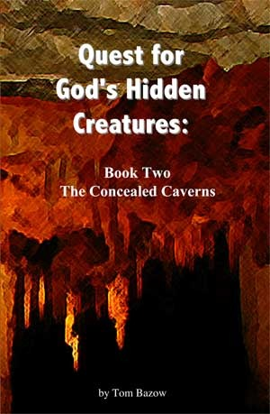 The Concealed Caverns by Tom Bazow