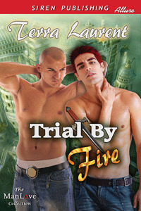 Trial by Fire by Terra Laurent