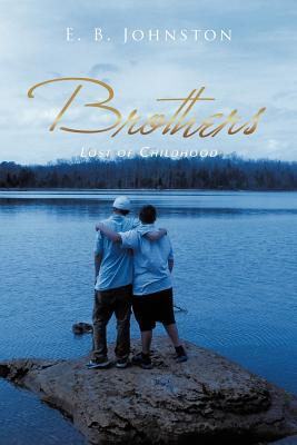 Brothers: Lost of Childhood
