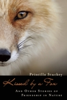 Kissed by a Fox: And Other Stories of Friendship in Nature