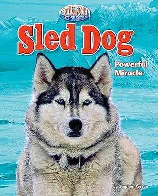 Sled Dog by Stephen Person