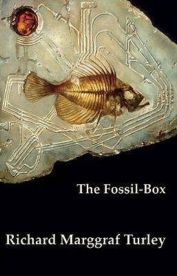 The Fossil Box