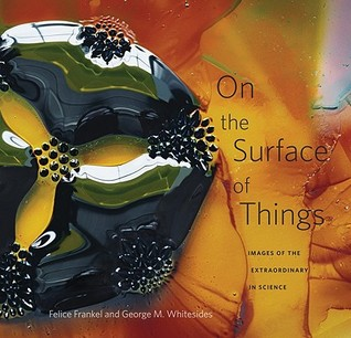 On the Surface of Things by Felice Frankel
