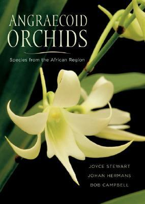 Angraecoid Orchids by Joyce Stewart