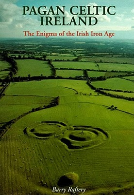 Pagan Celtic Ireland by Barry Raftery