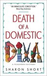 Death of a Domestic Diva (A Stain-busting Mystery, #1)