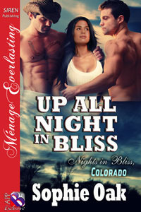 Up All Night in Bliss by Sophie Oak