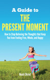 A Guide to the Present Moment by Noah Elkrief