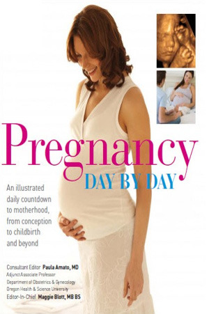 Pregnancy Day By Day by Paula Amato