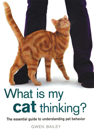What Is My Cat Thinking? by Gwen Bailey