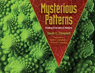 Mysterious Patterns: Finding Fractals in Nature
