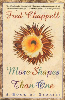 More Shapes Than One: A Book of Stories