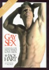 Gay Sex: A Manual for Men Who Love Men