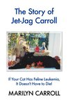 The Story of Jet-Jag Carroll