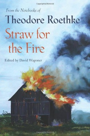 Straw for the Fire by Theodore Roethke