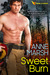 Sweet Burn (When SEALs Come Home, #3)