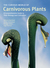 The Curious World of Carnivorous Plants: A Comprehensive Guide to Their Biology and Cultivation