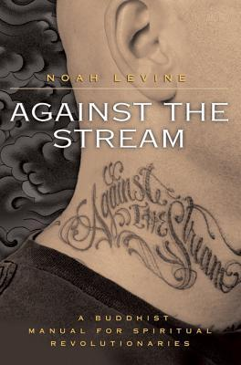 Against the Stream by Noah Levine