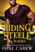 Riding Steele: Wanted (Riding Steele, #4)