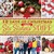 12 Days of Christmas with Six Sisters' Stuff: 144 Ideas for Traditions, Homemade Gifts, Recipes, and More