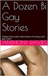 A Dozen Bi Gay Stories: Twelve short ultra rude stories of curious and gay males