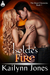 Isolde's Fire (The Draoi Chronicles #1)
